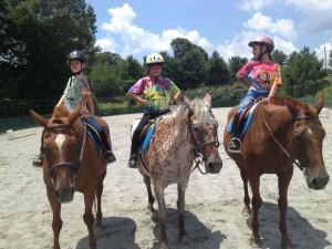 Chukkar elem horses photo