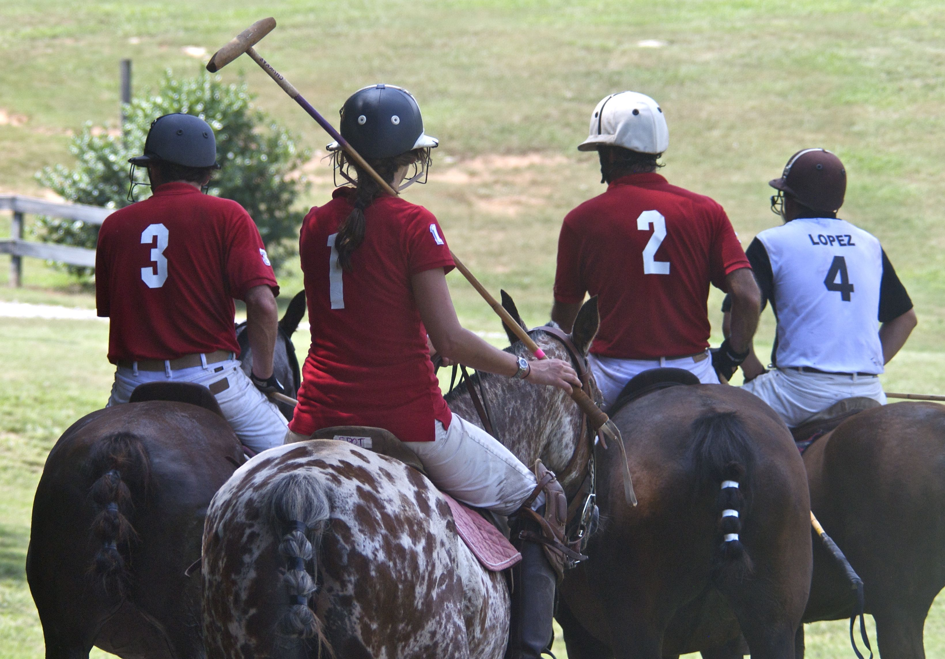 Polo is For Everyone
