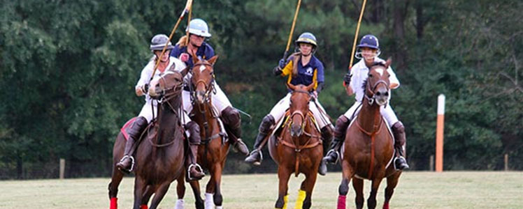 Polo for Parkinsons Fundraiser