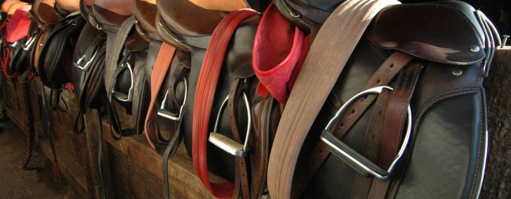 Your First Horseback Riding Lesson