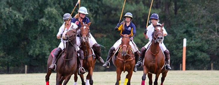 7th Annual Polo for Parkinson's Event