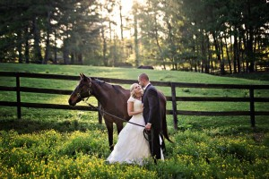 wedding couple with horse