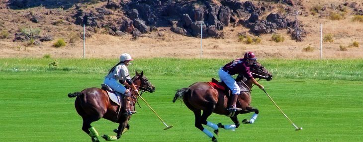 10 Polo Terms to Know