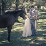 Horse Barn Wedding