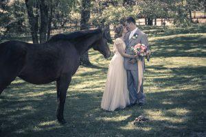 Horse Barn Wedding